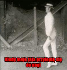 http://www.chamsko.pl/49358/Jaja_przy_nodze