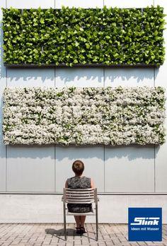 植物を絵画のように壁にかけて飾ろう