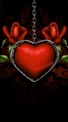 Heart Wallpaper, Wallpaper Ideas, Wallpaper Backgrounds, Wallpapers, Types Of Roses, Black Roses, Golden Heart, Christmas Bulbs, Goth