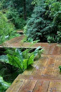 Awesome Garden Pathway Design Ideas 73 Structures Paths Lawn And