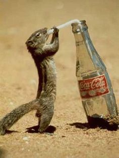 Have a Coke and a smile!