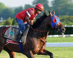 Social Inclusion at Belmont Park May 27, 2014 Coglianese Photos/Lauren King