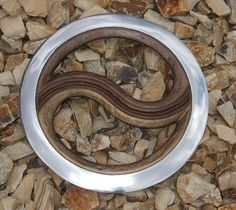 I would recommend not being around me the first couple days I have this...Xena Yin-Yang Chakram