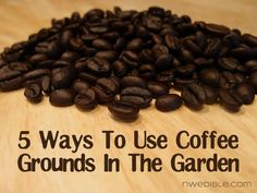 5 ways to use coffee grounds in the garden: lees hier: http://www.nwedible.com/2013/02/5-ways-to-use-coffee-grounds-in-the-garden.html?utm_source=feedburner_medium=feed_campaign=Feed%3A+NorthwestEdibleLife+%28Northwest+Edible+Life%29