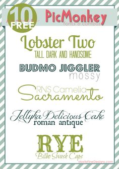 Free Font Friday   PicMonkey Fonts and Combinations - www.MoritzFineBlogDesigns.com