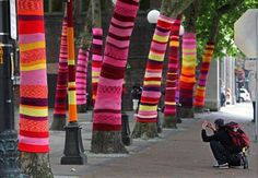 Just returned from Seattle where all the trees had been knitted sweaters in this park.  : )