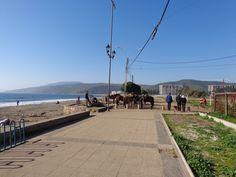 caballos en la playa grande
