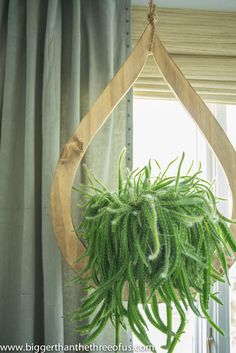 Mid-Century Inspired DIY Plant Hanger