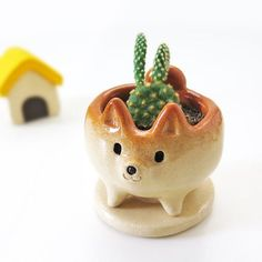 "Ceramic work ""The quite small cactus-pot of Shiba Inu shape"" 柴犬 工房しろ Japan Shiba Inu, Small Cactus, Cactus Pot, Diy Clay, Clay Crafts, Ceramic Clay, Ceramic Pottery, Flower Pots, Biscuit"