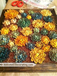 This is so cool. Crafter used discarded pistachio shells to create a faux succulent vertical garden. This could be a really beautiful piece of wall art and created in any color combination you choose.