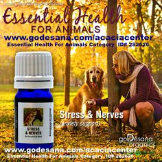 Dog Horse Farm Animals STRESS & NERVES http://godesana.com/stressnervesforanimals.asp?sponsorsite=acaciacenter French Medical Essential Oil Blend from Alexandria Brighton & goDesana Organics Animals can suffer from stress the same as humans, and like us, stress can take its toll on their bodies, resulting in poor physical and emotional health. Stress may also be the underlying cause of some of your pet's unacceptable behaviors such as gnawing on their feet, repeatedly licking their…