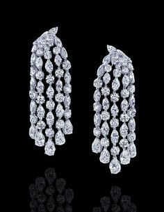 Image result for varuna d jani collection