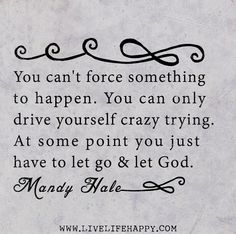 You can't force something to happen. You can only drive yourself crazy trying. At some point you just have to let go and let God. -Mandy Hale | Flickr - Photo Sharing!