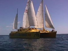 cat under sail 5.jpg (43600 bytes)