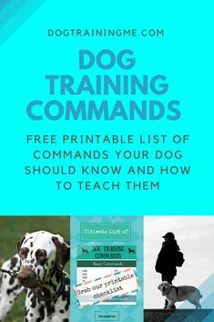 Dog Obedience Training We have a comprehensive list of dog training commands and how to teach your dog each one. Plus we have some fun tricks to teach your dog once they have mastered the basics. Click through for a free printable dog commands checklist. Dog Commands Training, Training Your Puppy, Dog Training Tips, Potty Training, Training Classes, Training Videos, Training School, Service Dog Training, Training Quotes