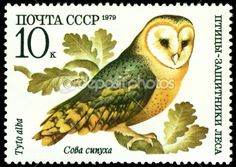 Vintage  postage stamp. Barn owl. by Sergey Ozerov - Stock Photo