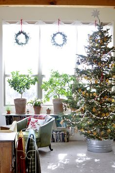 Thinking about putting our tree in our galvanized bucket this year. It would work in our house, and I kind of love it.