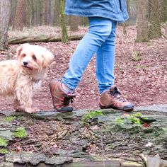 So let's talk about shoes. Not just your regular shoe but barefoot shoes. A shoe that allows your feet to move the way they were built to move. You can read more about it in the new blogpost.  #shoes #barefoot #barefootshoes #xeroshoes #dog #walking #forest #woods #wellness #bridgeoflife #bridgeoflifestudio #mudjeans #hemptailor #hoodlamb Barefoot Shoes, Let Them Talk, Walk On, Dog Walking, Woods, Wellness, Outfit, Instagram, Clothes