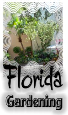 Central Florida Gardening Calender | Subtropical Gardening