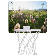 #photo - #Close picture of Portulaca grandiflora Mini Basketball Backboard