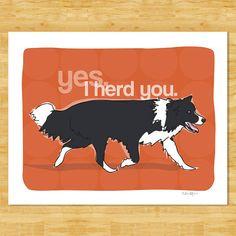 Impresión del arte del Border Collie  Un perro Collie de la frontera admite que Sí, yo le manada. Estos perros de pastoreo no te pierdas ni una oportunidad a la manada le.  • Impresión de arte del Border Collie está disponible en tres tamaños: 5 x 7 (13x18cm), 8 x 10 (20x25cm) y 11 x 14 (28x36cm) • Tamaños incluyen el borde blanco para enmarcar fácil en tamaños de marco estándar (marco y mat no incluido) • Impreso en fuerte papel de arte mate libre de ácido con tintas archival de la calidad…