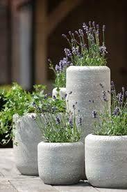 Image result for giant concrete hexagonal plant pots
