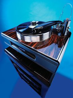 "Continuum Audio Labs Caliburn turntable with Cobra tonearm and some sort of ""cartridge"". This was made specifically for those of us (well, not ""us"") with too much money lying around."