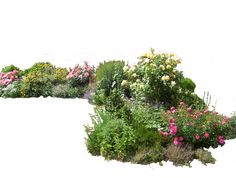 Flowered garden png 02 by MontvalentStock.deviantart.com