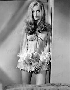 Sharon Tate, Hot Lingerie, Vintage Lingerie, Vintage Glamour, Vintage Beauty, Vintage Girls, Classic Beauty, Timeless Beauty, Hollywood Glamour