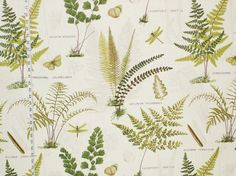 Fern Fabric -brickhousefabrics