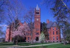 My alma mater. College Campus, College Hacks, College Life, Dream School, I School, Gettysburg College, It Movie Cast, Alma Mater, Wonders Of The World