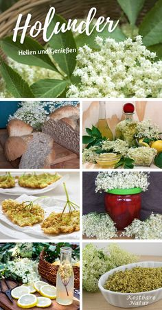 Der Holunder - ein uralter, mystischer Hausstrauch For the delicious cuisine and for healing, it is Herb Recipes, Healthy Recipes, Easy Homemade Pancakes, Healthy Life, Healthy Eating, True Food, One Pot Dishes, Garden Trellis, Medicinal Herbs