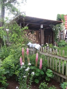 meine Landlust- love this shed. We could do this on our veranda.