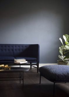 navy sofa and grey wall with a touch of greenery...
