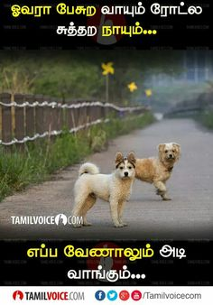 Voice Quotes, Comedy Quotes, Comedy Memes, Funny Comedy, Tamil Jokes, Tamil Funny Memes, Best Funny Jokes, Unique Quotes, Best Quotes