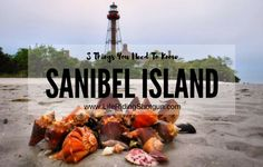 Sanibel Island on the southwest coast of Florida, west of Fort Myers, is world-renowned as one of the best beaches for shelling and beachcombing. It's southern facing beaches and calm currents make it ideal for collecting seashells. Over 200 species of seashells are known to wash up on the sandy shores of Sanibel Island.