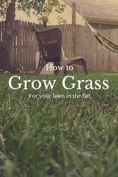 Late summer to early fall is one of the best times to establish new lawn growth for many parts of the country. Learn how to grow new grass this fall.