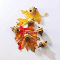 Acorn Treats.......another great Thanksgiving dessert the little ones can make to keep them busy :)