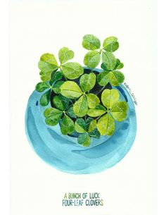 A Bunch of Luck. Four-Leaf Clovers  幸運滿載. 四葉草    Our Story:  We always have a bunch of four-leaf clovers on our dinning table. My husband always...