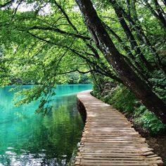 Plitvice Lakes, Croatia via @theonewithwanderlust #LiveTravelChannel