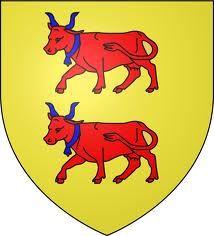 Le drapeau du Béarn