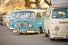 VW bus Heaven!!