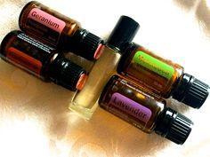 Eczema Blend 100% Pure Therapeutic Grade by EssentOilWellness