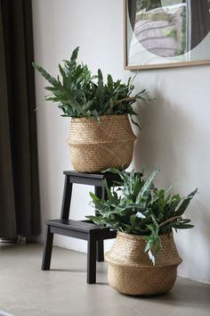 Ideas using wicker baskets ikea plants, potted plants, indoor plants, i Nordic Living, Home And Living, Living Room, Decoration Inspiration, Interior Inspiration, Indoor Garden, Indoor Plants, Ikea Plants, Potted Plants