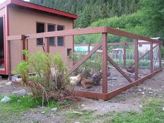 fence, idea for when i get chickens.