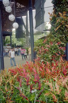 Jardin Botanico Medellin Colombia