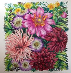 やっと完成しましたっ❤️前回や途中のpostにもかかわらず、沢山のいいねや、コメントありがとうございますっ✨とっても励みになりましたっ✨途中だったお花は色番がわからなくなるという事件がありましたが、色々と色味を試してみて、なんとか近い色をみつけるこのが出来ましたっ❤️ やっぱり、レイラさんの塗り絵は難しく疲労感がハンパないですが楽しく塗れましたっ( ´∀`) . . . #leiladuly #レイラデュリー #世界一美しい花のぬり絵book #ホルベイン色鉛筆 #ホルベイン #コロリアージュ #大人のぬりえ #大人の塗り絵 #おとなのぬり絵 #おとなの塗り絵 #おとなのぬりえ #大人塗り絵 2016.11.15 No.74