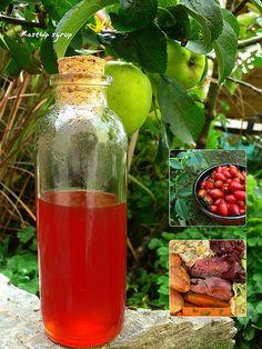 rosehip syrup | Flickr - Photo Sharing!