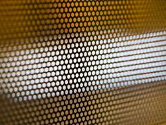 Loosing focus ( Olympus PEN E-PL6 + Vivitar 55mm. F2.8 Macro - ©iddiBiri )