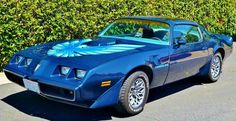 1979 Pontiac Trans Am. - Possibly the most gorgeous car and color I've ever seen.